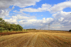 Paesaggio di estate con il campo ed il cielo Immagini Stock Libere da Diritti