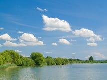 Paesaggio di estate con il fiume Fotografie Stock Libere da Diritti