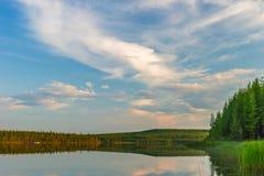 Paesaggio di estate con il fiume, cielo nuvoloso, foresta ed erba e fiori fotografia stock