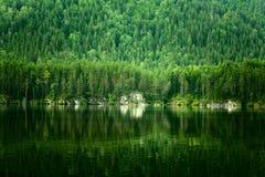 Paesaggio di estate con il lago Fotografia Stock