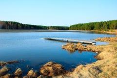 Paesaggio di estate con il lago della foresta Fotografia Stock