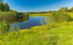 Paesaggio di estate con il piccolo fiume Merla, oblast di Poltavskaya, Ucraina Immagine Stock Libera da Diritti