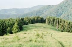 Paesaggio di estate con il sentiero per pedoni nelle montagne Fotografia Stock Libera da Diritti