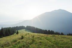 Paesaggio di estate con il sentiero per pedoni nelle montagne Immagini Stock