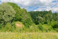 Paesaggio di estate con la foresta, il burrone e le nuvole Immagini Stock Libere da Diritti