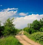 Paesaggio di estate con la strada fotografia stock libera da diritti