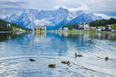 Paesaggio di estate con le anatre sul lago Misurina Fotografia Stock