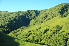 Paesaggio di estate con le montagne di verde di Caucaso Fotografie Stock Libere da Diritti