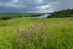 Paesaggio di estate con le viste del fiume dall'alta Banca Immagine Stock