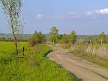 Paesaggio di estate con una strada campestre Fotografia Stock Libera da Diritti