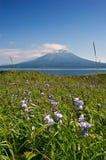 Paesaggio di estate contro il contesto del vulcano Stokap Fotografia Stock Libera da Diritti