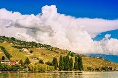 Paesaggio di estate del lago Lemano Fotografia Stock Libera da Diritti