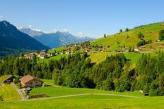 Paesaggio di estate del lato rurale del paese della Svizzera immagine stock