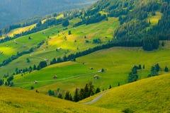Paesaggio di estate del lato rurale del paese della Svizzera fotografie stock