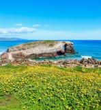 Paesaggio di estate della costa di Cantabric Immagini Stock