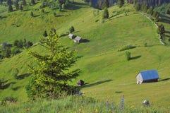 Paesaggio di estate della montagna Fotografie Stock Libere da Diritti