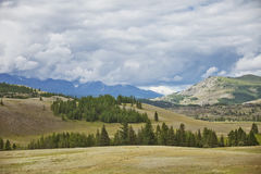 Paesaggio di estate della montagna di Altai vicino a Kurai Immagini Stock Libere da Diritti