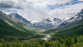 Paesaggio di estate delle montagne della Norvegia e fiume nel canyon Fotografie Stock Libere da Diritti
