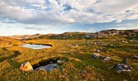 Paesaggio di estate di Nord Fotografia Stock Libera da Diritti