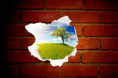 Paesaggio di estate dietro il foro rosso del muro di mattoni Immagini Stock Libere da Diritti