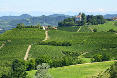 Paesaggio di estate in Langhe (Italia) Fotografia Stock Libera da Diritti