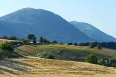 Paesaggio di estate Marche (in Italia) Immagini Stock Libere da Diritti