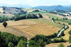 Paesaggio di estate Marche (in Italia) Fotografia Stock Libera da Diritti