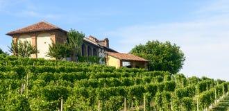 Paesaggio di estate in Monferrato (Italia) Immagini Stock