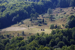 Paesaggio di estate in montagne di Apuseni Immagine Stock Libera da Diritti
