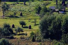 Paesaggio di estate in montagne di Apuseni Fotografie Stock Libere da Diritti