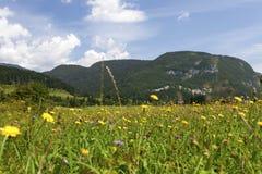 Paesaggio di estate in montagne e nel cielo blu scuro con le nuvole Immagini Stock Libere da Diritti
