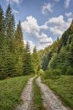 Paesaggio di estate in montagne e nel cielo blu scuro con le nuvole Immagini Stock