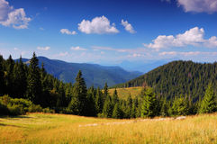 Paesaggio di estate in montagne un il giorno pieno di sole immagini stock libere da diritti