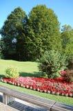 Paesaggio di estate nel parco del palazzo di Linderhof Immagine Stock