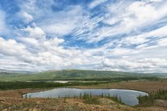 Paesaggio di estate nella tundra immagine stock libera da diritti