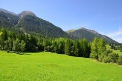 Paesaggio di estate nelle alpi della Svizzera Immagini Stock