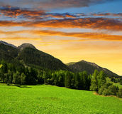 Paesaggio di estate nelle alpi della Svizzera Fotografia Stock Libera da Diritti