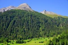 Paesaggio di estate nelle alpi della Svizzera Fotografie Stock Libere da Diritti