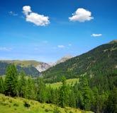 Paesaggio di estate nelle alpi della Svizzera Fotografia Stock