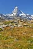 Paesaggio di estate nelle alpi svizzere Fotografia Stock