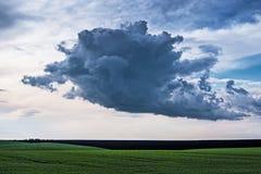Paesaggio di estate, sopra un cloud_ enorme del campo verde Fotografia Stock Libera da Diritti