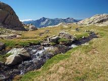 Paesaggio di estate di spirito corsician dei alpes dell'alta montagna innevata Fotografie Stock