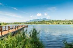 Paesaggio di estate sul lago, Italia del nord Pilastro di legno sul lago Varese, nei precedenti il dei Fiori del campo e le alpi Fotografie Stock