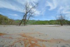 Paesaggio di estate sul lago sterile al villaggio di Geamana dalle montagne di Apuseni Immagine Stock