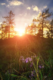 Paesaggio di estate in Urals del sud, Russia Il sole che si siede dietro la cima della montagna di Sugomak Immagini Stock