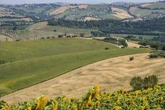 Paesaggio di estate vicino a Monterubbiano Fermo, Marche Fotografia Stock Libera da Diritti