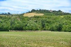 Paesaggio di estate vicino a Serramazzoni Modena, Italia Fotografia Stock Libera da Diritti