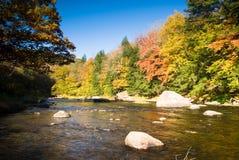 Paesaggio di Fall River Fotografie Stock