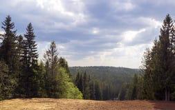 Paesaggio di Forest Hills e cielo nuvoloso Fotografia Stock