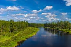 Paesaggio di giorno di estate con il fiume, la foresta, le nuvole sul cielo blu ed il sole Immagini Stock Libere da Diritti